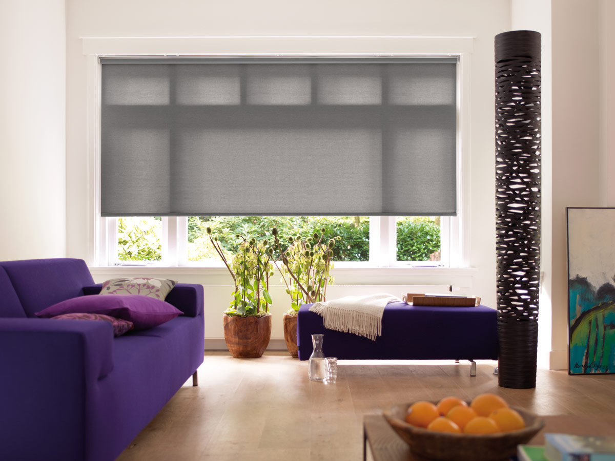 Roller Shades 3